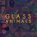 Glass-Animals-5x5